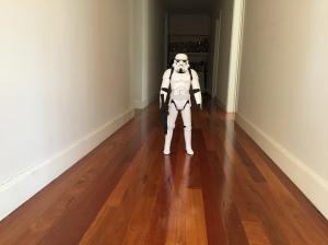 Trooper of floorboards